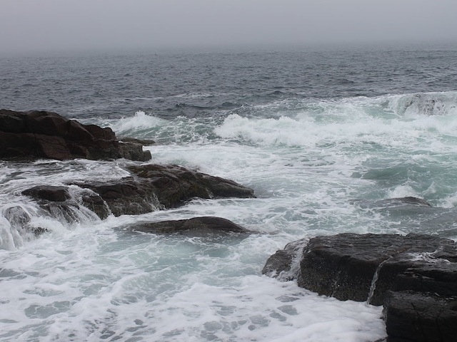 High_tide_near_Thunder_Hole,_ME_IMG_2439